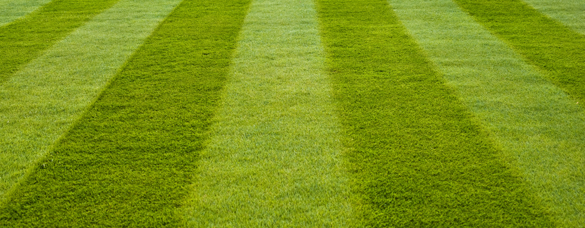 lawn-services-img_1140x445